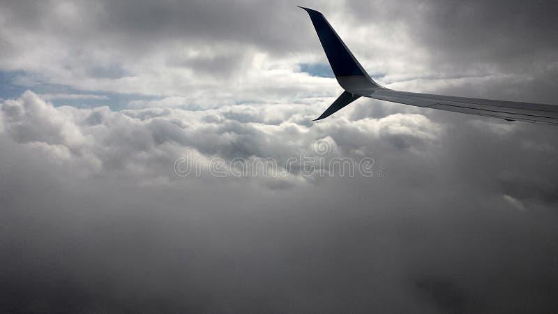 Uma asa no céu fotos de stock