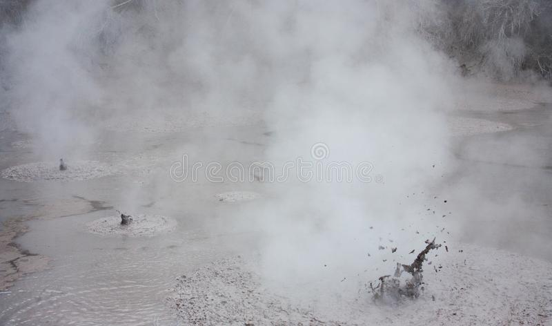 Uma associação vulcânica natural da lama no parque geotérmica de Wai-O-Tapu em Nova Zelândia fotografia de stock royalty free