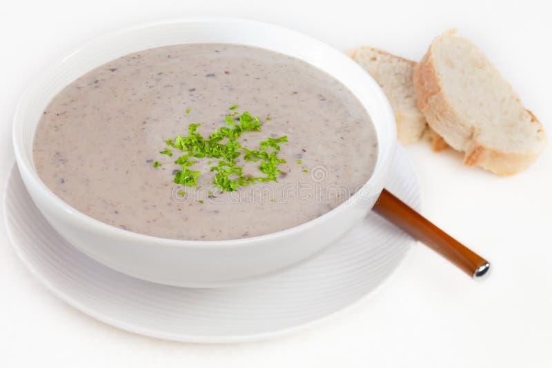 Sopa de cogumelo com pão fotos de stock royalty free