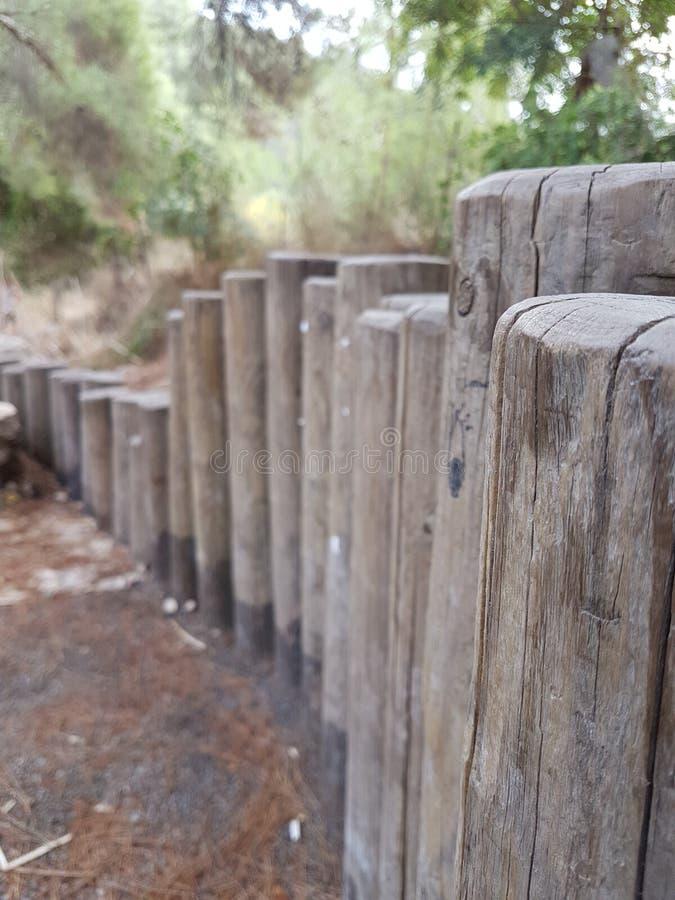 Uma baixa cerca feita de troncos de madeira no parque imagem de stock royalty free