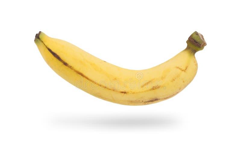 Uma banana madura real isolada no branco imagem de stock