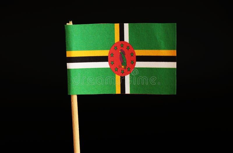 Uma bandeira nacional de Domínica na vara de madeira no fundo preto Bandeira civil e do estado No meio é o papagaio roxo do sisse fotografia de stock