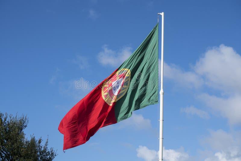 Uma bandeira portuguesa fotografia de stock