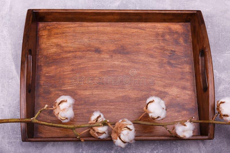 Uma bandeja de madeira com bichano-salgueiro fotos de stock