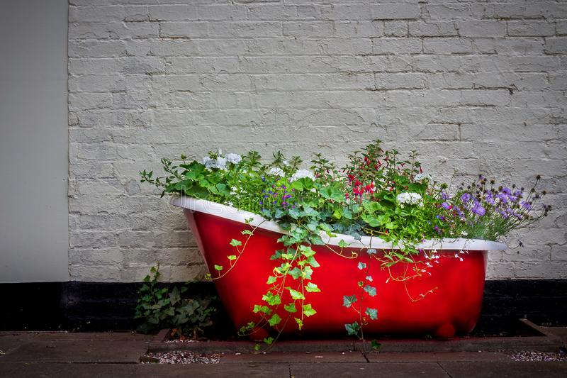 Uma banheira floral do ferro fundido fotos de stock royalty free