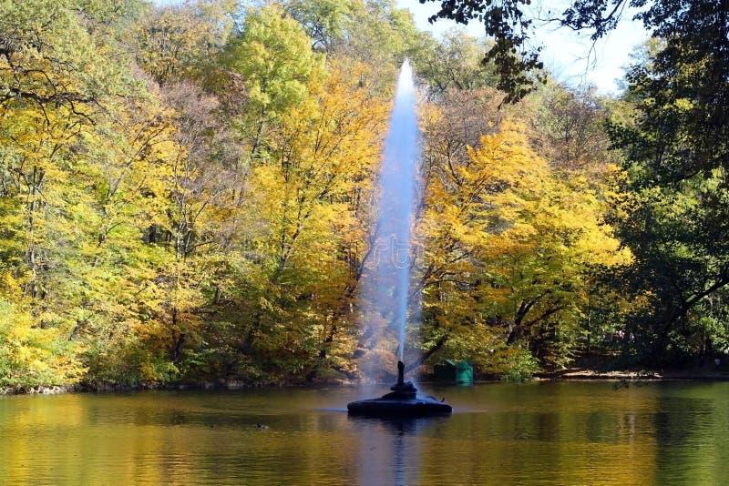 Uma batida da fonte no meio do rio contra o contexto de uma paisagem do outono com as árvores com decíduo foto de stock