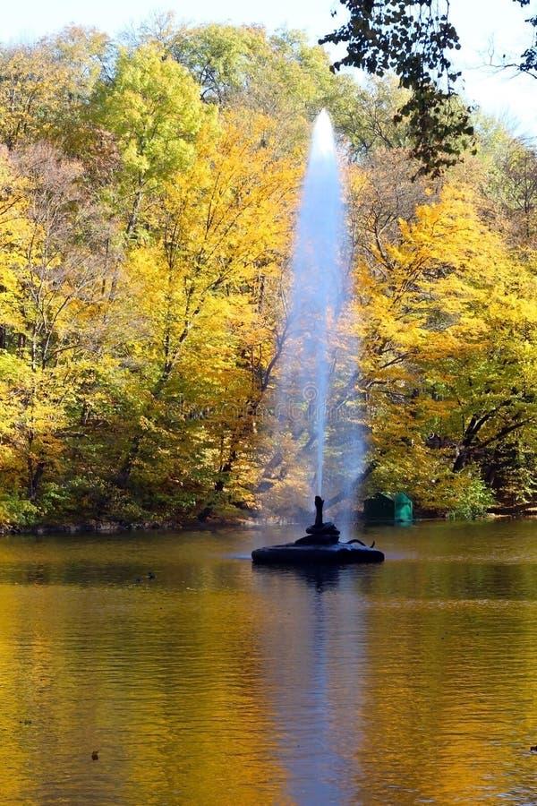 Uma batida da fonte no meio do rio contra o contexto de uma paisagem do outono com as árvores com decíduo imagem de stock royalty free