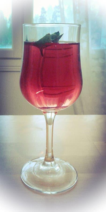 Uma bebida com a folha da basílica fotografia de stock