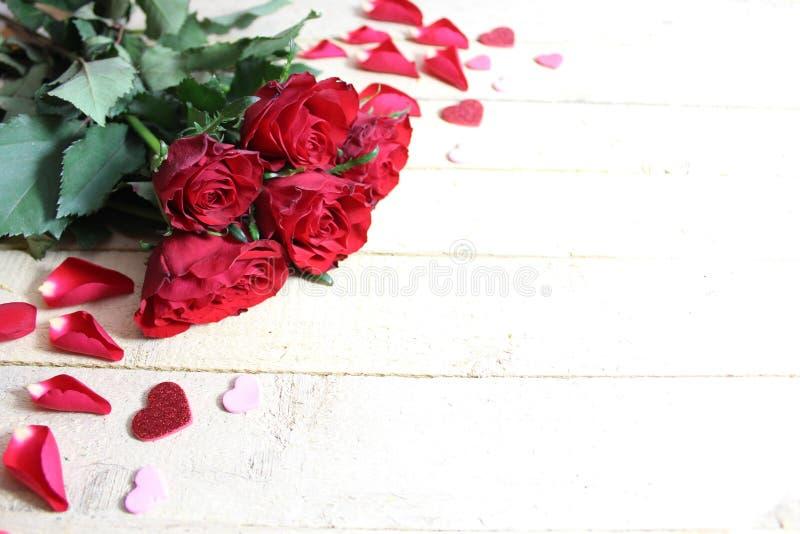 Uma beira cor-de-rosa bonita foto de stock royalty free