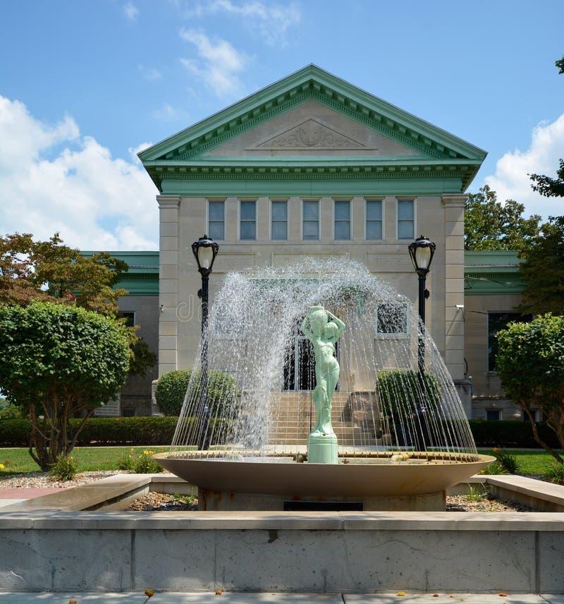 Uma biblioteca de Carnegie imagem de stock