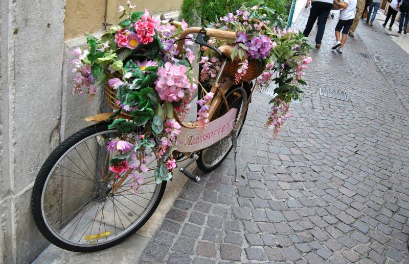 Uma bicicleta especial foto de stock royalty free