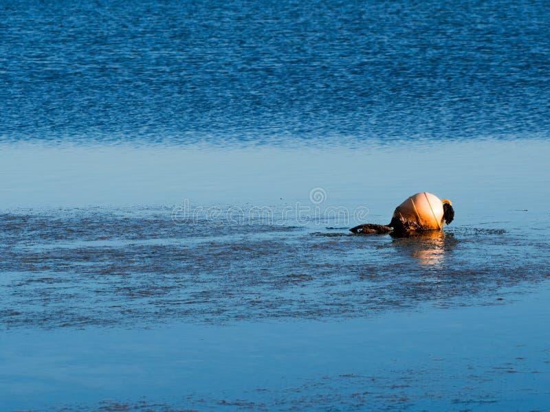 Uma boia alaranjada resistida na maré baixa foto de stock royalty free