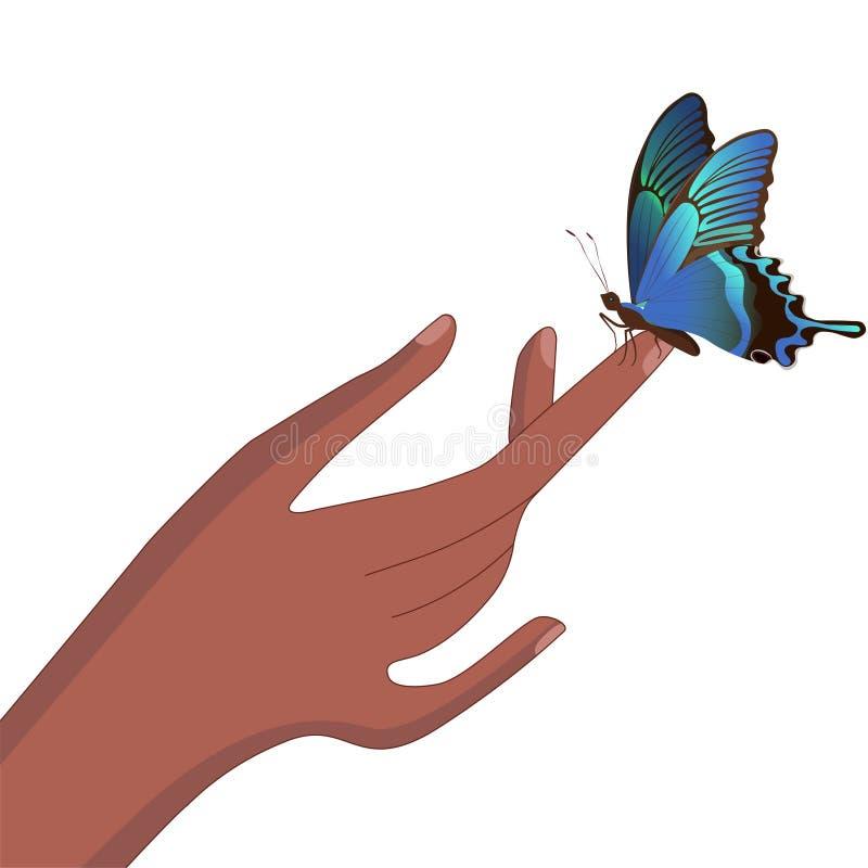 Uma borboleta senta-se em um dedo Imagem do vetor ilustração royalty free