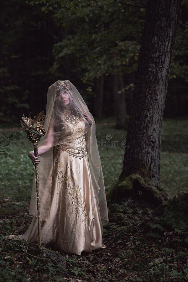 Uma bruxa da floresta em um parque escuro imagens de stock royalty free