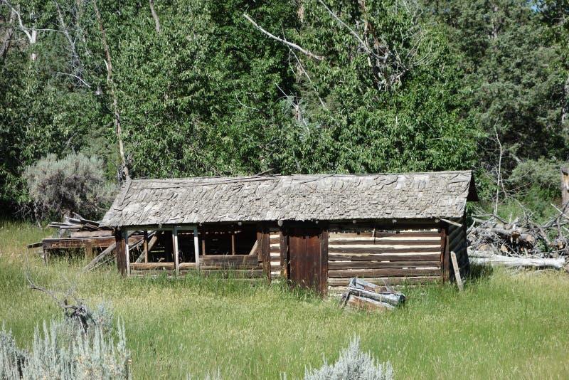 Uma cabana rústica de madeira abandonada em wyoming imagem de stock