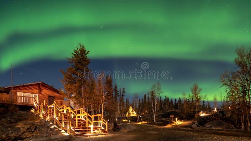 Uma cabana rústica de madeira na floresta do pinho sob o aurora borealis em YellowKnife fotografia de stock royalty free