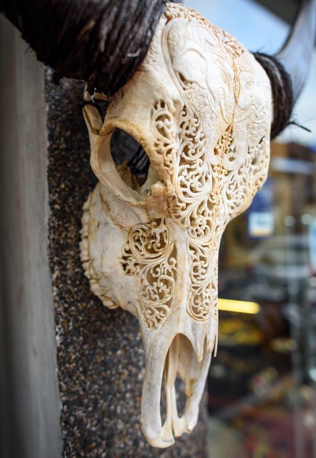 Uma cabeça cinzelada do búfalo fotografia de stock royalty free