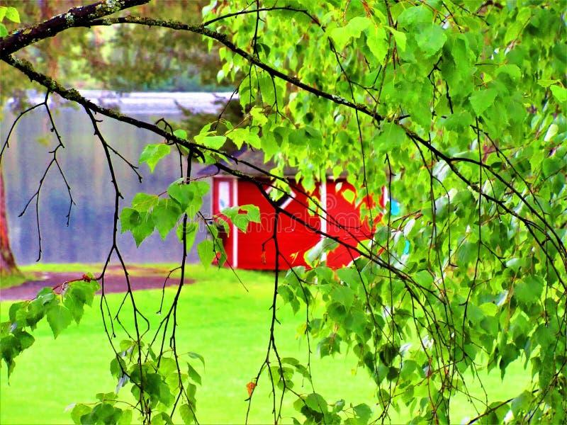 Uma cabine vermelha pequena velha no fundo atrás dos leavs verdes foto de stock royalty free
