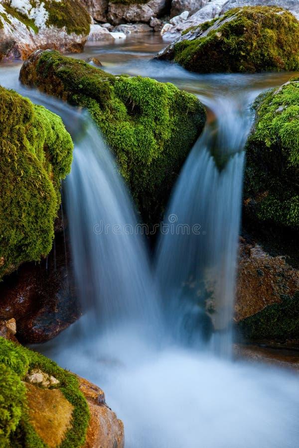 Uma cachoeira do córrego da montanha. imagem de stock royalty free
