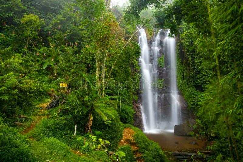 Uma cachoeira famosa de Munduk em uma ilha tropical da selva de Bali, Indonésia fotografia de stock royalty free