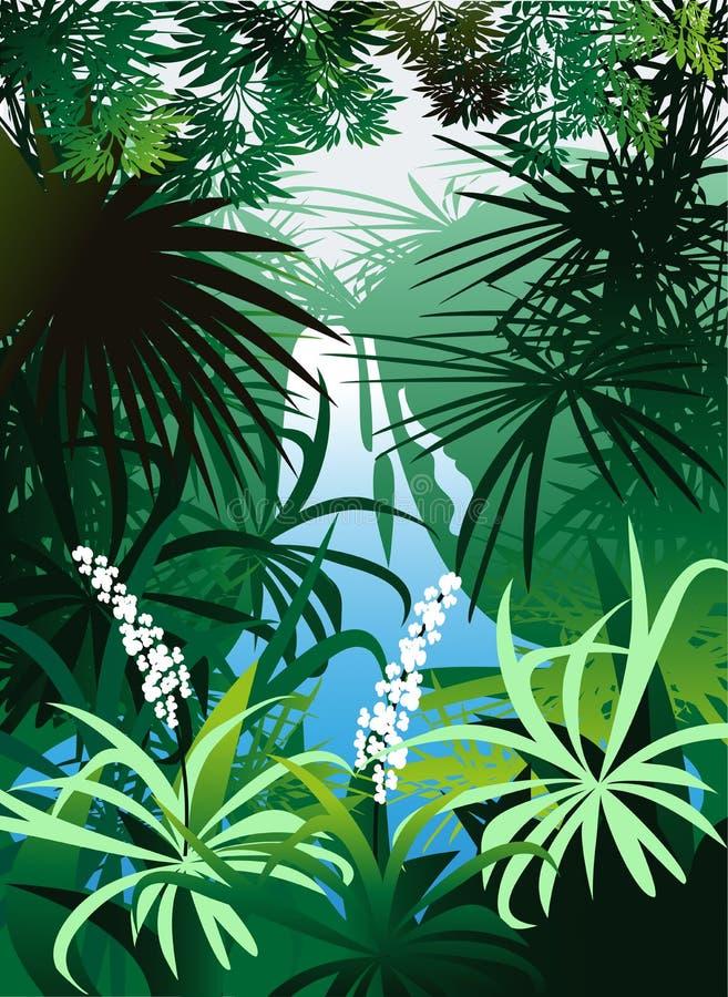 Uma cachoeira na selva ilustração do vetor