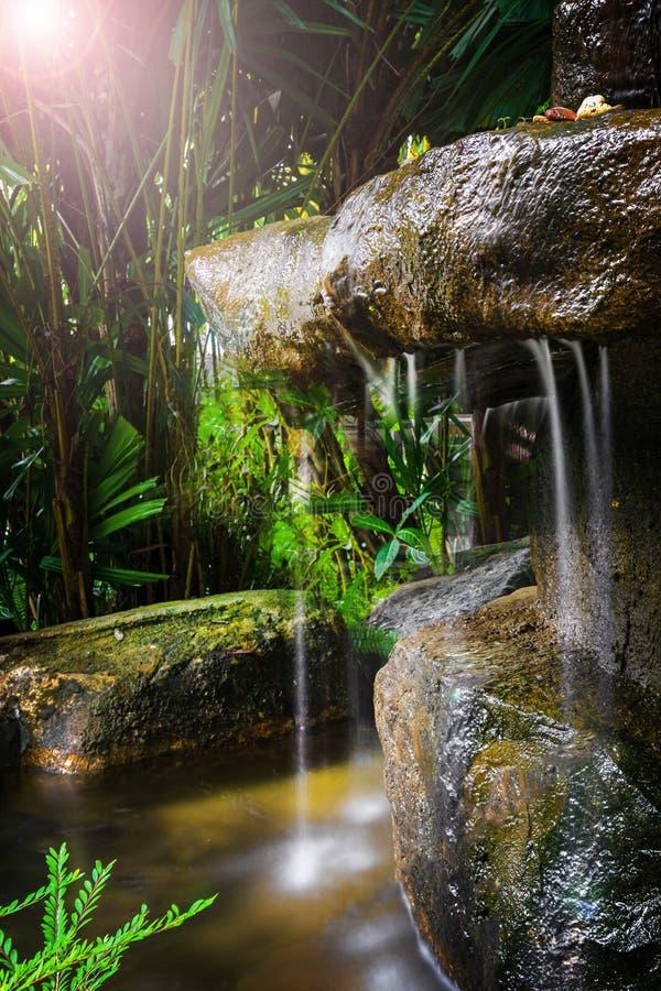 Uma cachoeira pequena na floresta e na selva, escondidas entre as plantas, a escuridão e o sol pequeno tiro com longo fotografia de stock