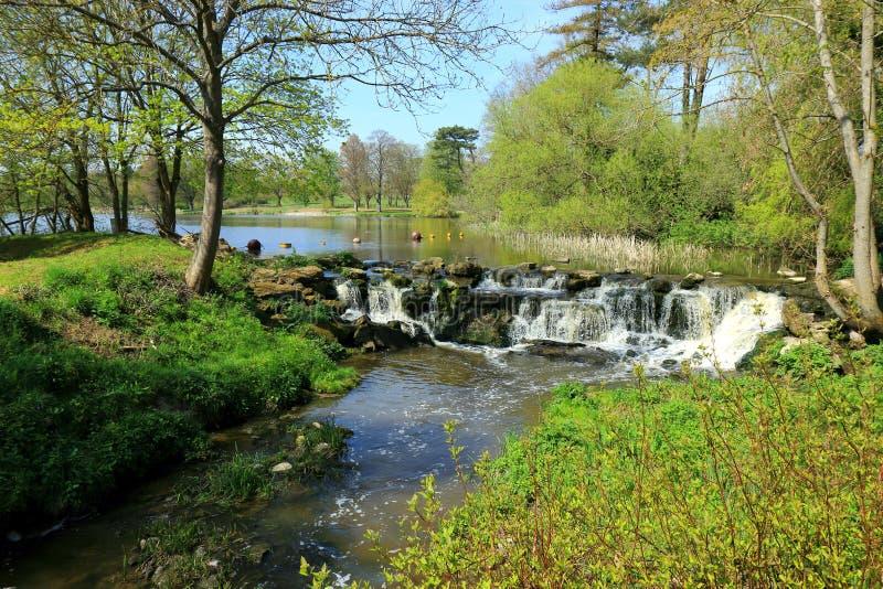 Uma cachoeira pequena que flui de um lago em Kent fotos de stock royalty free