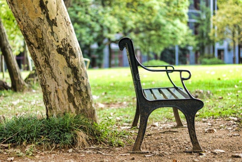 Uma cadeira vazia e um tronco de árvore velho em Green Park imagem de stock royalty free