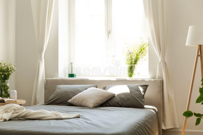 Uma cama confortável com fundamento da grafite e coxins contra uma janela brilhante em um interior amigável do quarto do eco em u fotografia de stock