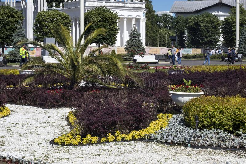 Uma cama de flor com uma palmeira e pedras brancas na frente do pavilhão de Usbequistão em VDNKh imagens de stock royalty free