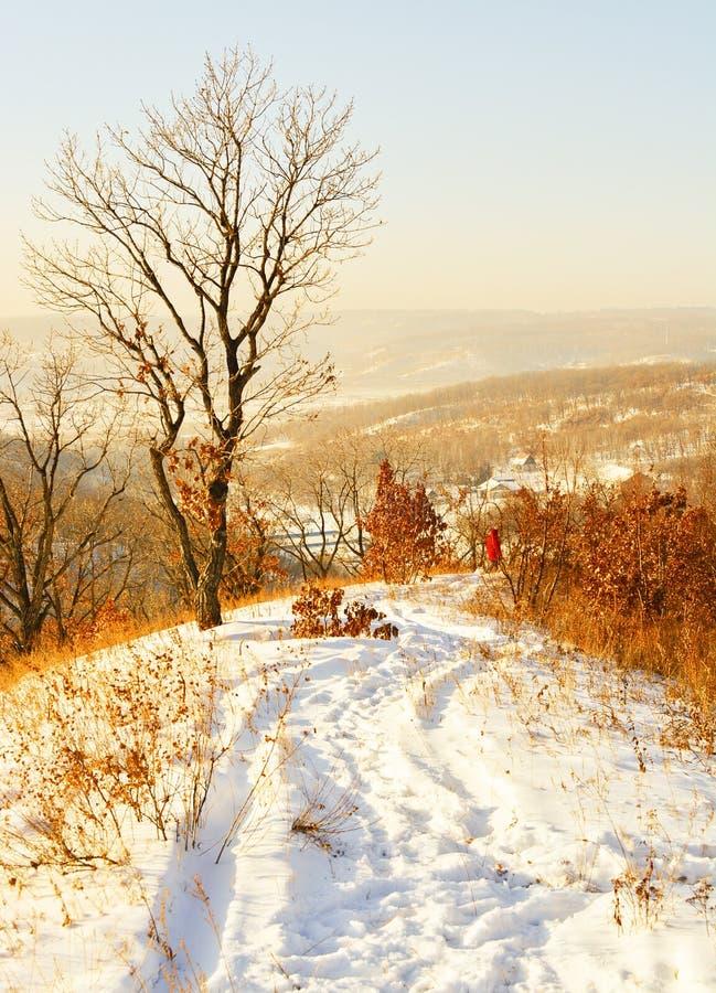 Uma caminhada em um dia de inverno imagens de stock