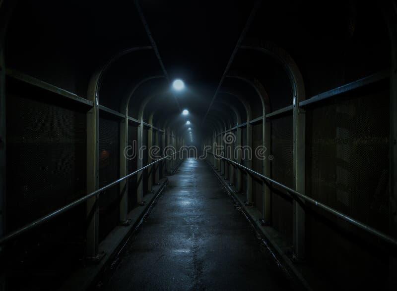 Uma caminhada na obscuridade fotografia de stock royalty free