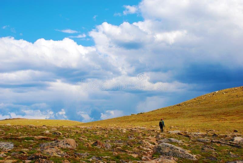 Uma caminhada na tundra da montanha rochosa imagem de stock
