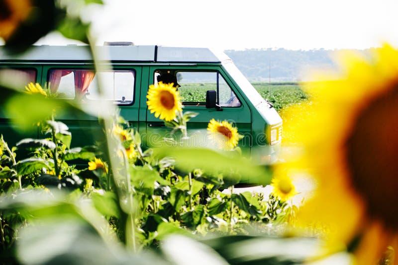 Uma camionete de campista em um campo do girassol fotografia de stock royalty free