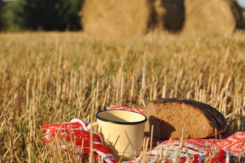 Uma caneca rústica do metal de leite e de um meio naco do pão de centeio imagens de stock
