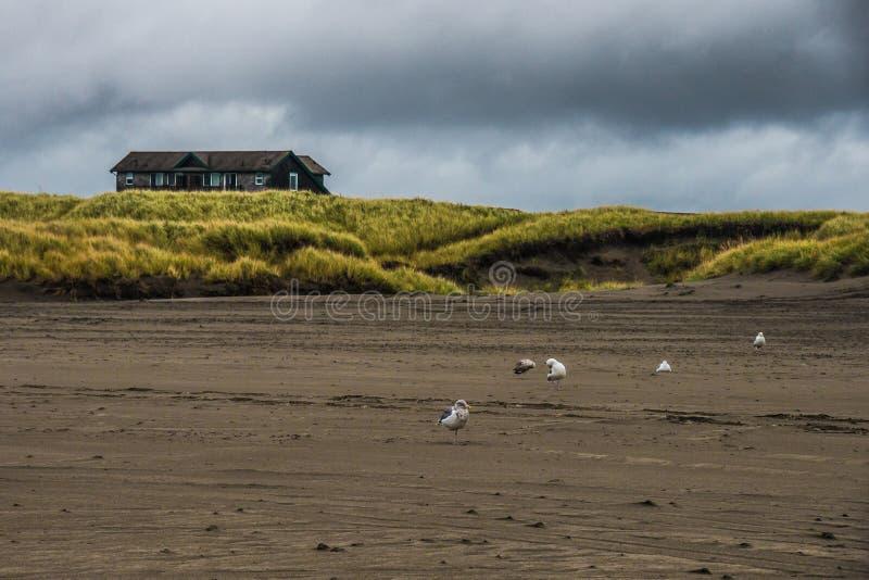 Uma casa de praia de madeira Sit On um monte pequeno em um campo gramíneo verde em Autumn Evening In Long Beach tormentoso Washin foto de stock royalty free