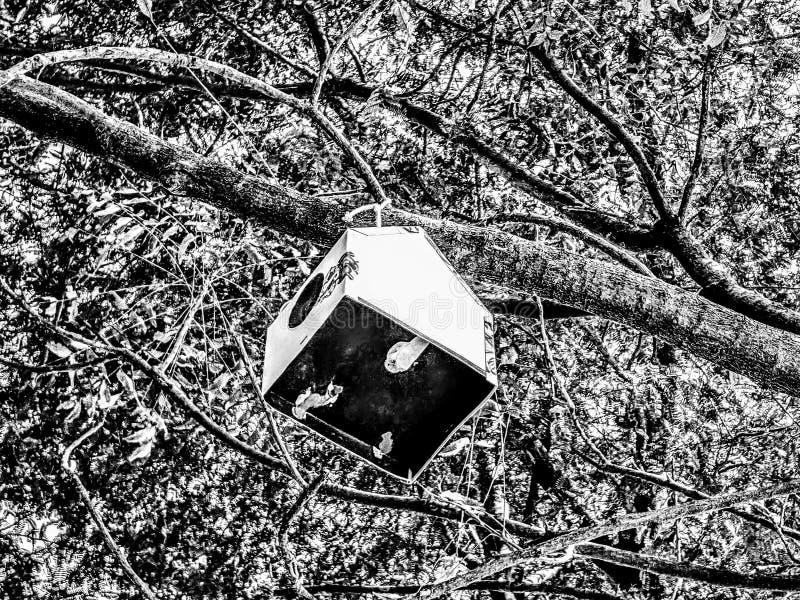 Uma casa na árvore para o pássaro imagens de stock royalty free