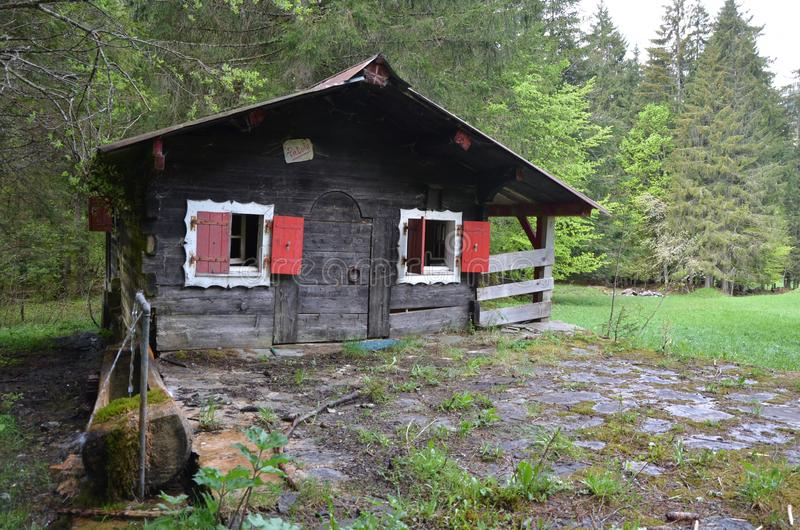 Uma casa pequena a estar feliz fotos de stock royalty free