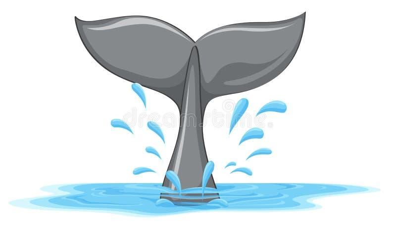 Uma cauda de uma baleia ilustração stock