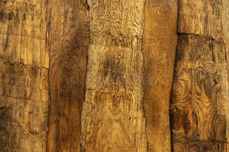 Uma cerca de madeira no Oeste Selvagem olha do vento, na qual a casca individual é virada uma contra a outra e lixada de opaco fotos de stock