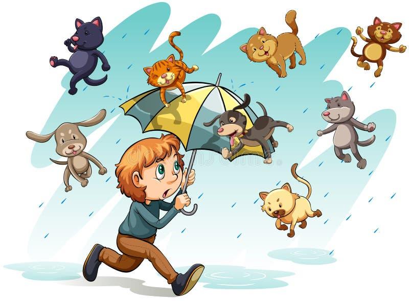 Uma chuva com gatos e cães ilustração royalty free