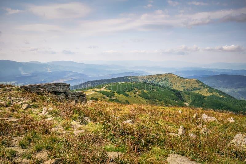 Uma clareira da montanha no outono foto de stock