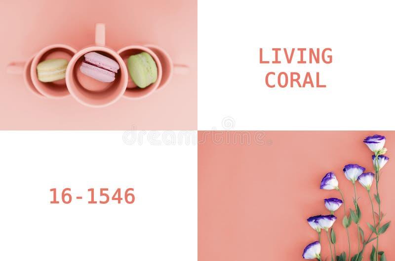 Uma colagem das fotos na cor que vive em 2019 o coral foto de stock royalty free