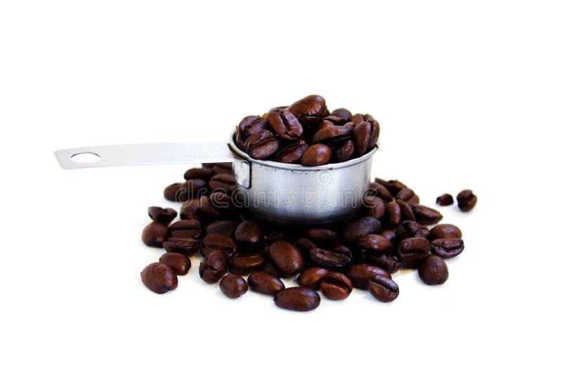Uma colher de feijões de café foto de stock royalty free