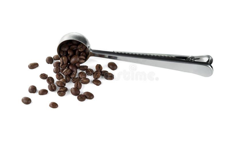 Uma colher de medição de aço com os feijões de café roasted Isolado em um branco foto de stock royalty free