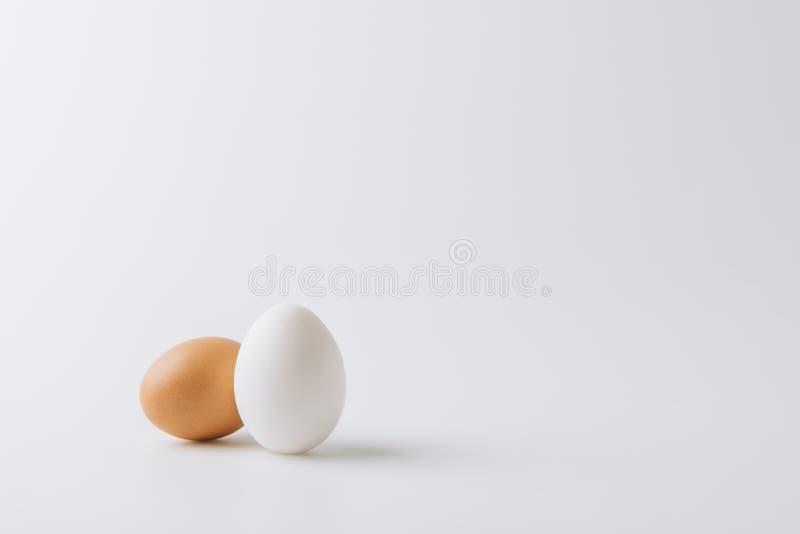 uma colocação de ovos brancos e uma marrons fotografia de stock royalty free