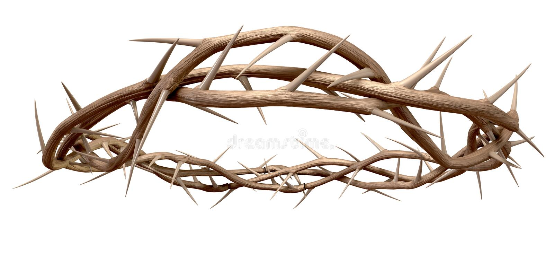 Uma coroa de espinhos fotografia de stock royalty free