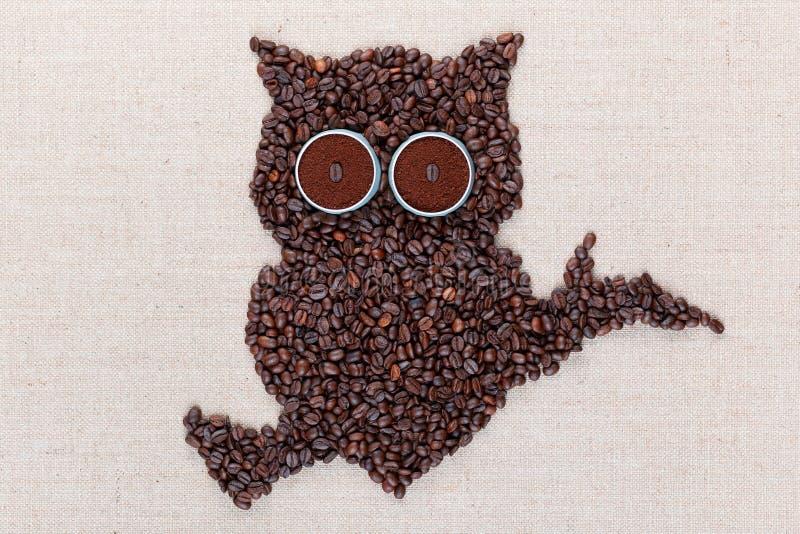 Uma coruja que situa em um ramo feito toda dos feijões de café, alinhados no centro, close up imagens de stock
