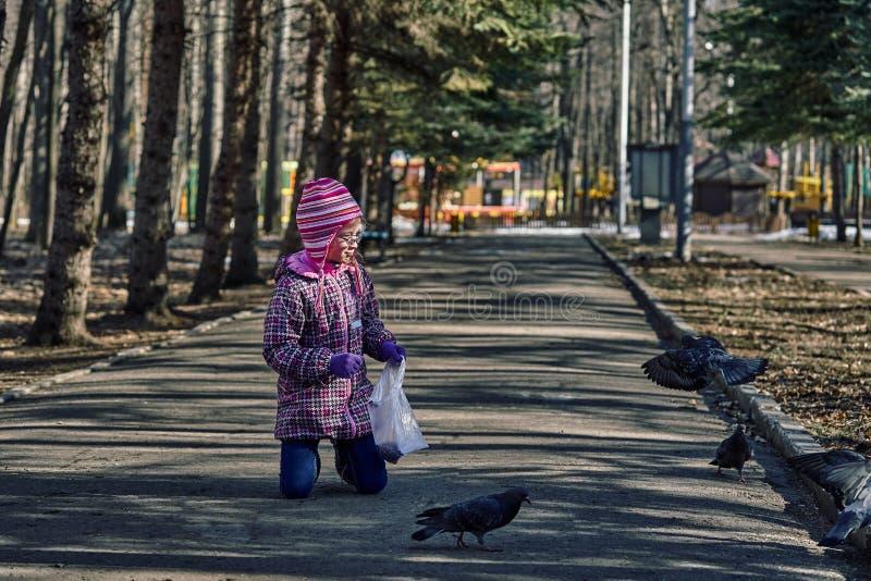 Uma criança da menina em pombas das alimentações de um revestimento vermelho, do chapéu e dos vidros no parque com sementes imagem de stock
