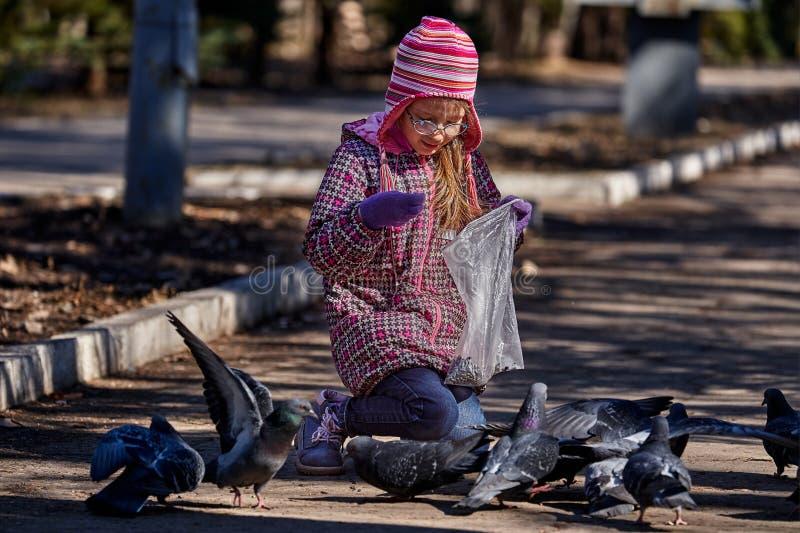 Uma crian?a da menina em pombas das alimenta??es de um revestimento vermelho, do chap?u e dos vidros no parque com sementes fotos de stock